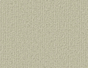 Shaw-Carpet-Philadelphia-Color-Accents-Tumble Weed