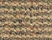 Shaw- Carpet- Philadelphia- Main- St- Constituent- Crucial element