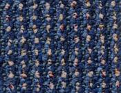 Shaw- Carpet- Philadelphia- Main- St- Constituent- Elector