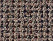 Shaw- Carpet- Philadelphia- Main- St- Constituent- Unification