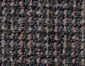 Shaw- Carpet- Philadelphia- Main- St- Constituent- Voter
