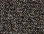Shaw- Carpet- Philadelphia- Consultant- Tile-Network