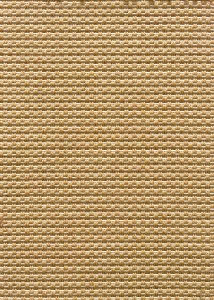 Buy Costa Rica By Stanton Indoor Outdoor Carpet