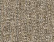 Shaw-Philadelphia-Carpet-Crazy-Smart-Astute