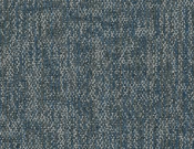 Shaw-Philadelphia-Carpet-Crazy-Smart-Intense