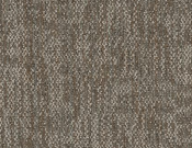 Shaw-Philadelphia-Carpet-Crazy-Smart-Keen