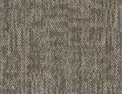 Shaw-Philadelphia-Carpet-Crazy-Smart-Showy