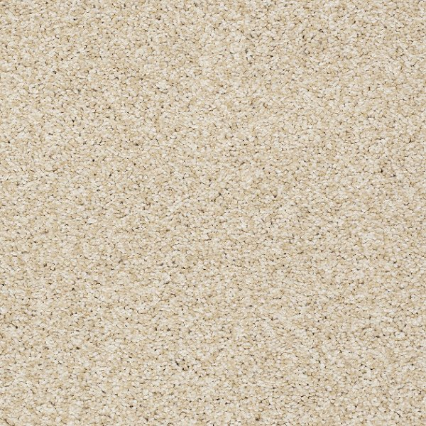 Days Like This By Shaw Texture Carpet Residential