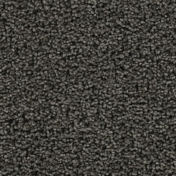 Buy Dearest By Beaulieu Bliss Polyester Carpets In Dalton