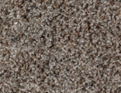 Mohawk-Carpet-Horizon-Design-Portrait-Bluff View