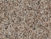 Mohawk-Carpet-Horizon-Design-Portrait-Heirloom