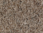 Mohawk-Carpet-Horizon-Design-Portrait-Nature's Blend
