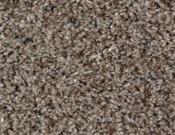 Mohawk-Carpet-Horizon-Design-Portrait-Pebblestone
