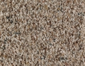 Mohawk-Carpet-Horizon-Design-Portrait-Wild Oats