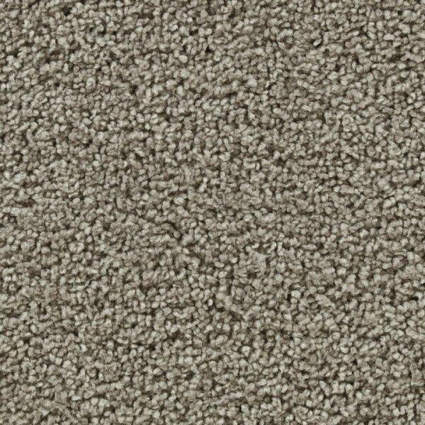 Buy Devoted by Beaulieu Polypropylene | Carpets in Dalton