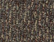 Shaw- Carpet- Philadelphia- Direct- Link- Communication