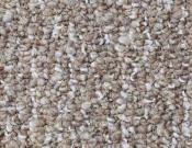 Shaw- Carpet- Philadelphia- Direct- Link- Hand deliver