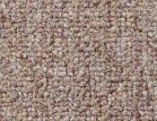 Shaw- Carpet- Philadelphia- Dividend- 28 - Capital