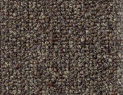 Shaw- Carpet- Philadelphia- Dividend- 28 - Checking