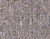 Shaw- Carpet- Philadelphia- Dividend- 28 - Credit line