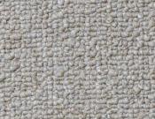 Shaw- Carpet- Philadelphia- Dividend- 28 - Deposit