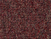 Shaw- Carpet- Philadelphia- Dividend- 28 - High Intrest