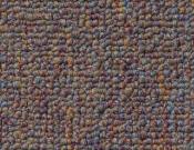 Shaw- Carpet- Philadelphia- Dividend- 28 - Loan officer