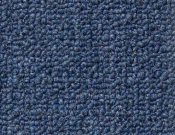Shaw- Carpet- Philadelphia- Dividend- 28 - Options