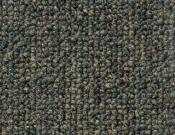 Shaw- Carpet- Philadelphia- Dividend- 28 - Percentage