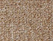 Shaw- Carpet- Philadelphia- Dividend- 28 - Savings
