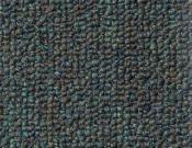 Shaw- Carpet- Philadelphia- Dividend- 28 - Share Holder