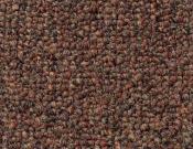 Shaw- Carpet- Philadelphia- Dividend- 28 - Withdrawal