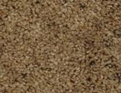 Phenix- Carpet- Divine- 112 Beseech
