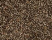 Phenix- Carpet- Divine- 824 Snare