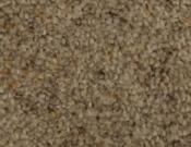 Phenix- Carpet- Divine- 913 Decoy
