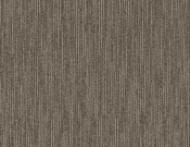 Shaw-Philadelphia-Carpet-Dynamo-Masterful