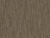 Shaw-Philadelphia-Carpet-Dynamo-Scholarly