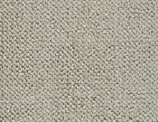 J- Mish- Carpet- Elegance- Soft Beige
