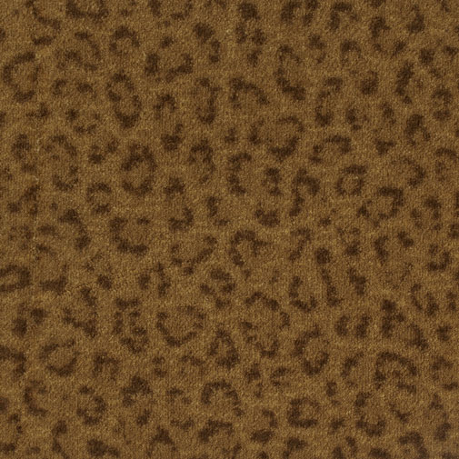 Exotic Touch By Milliken Carpet Residential Print