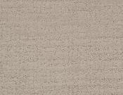 Dixie- Home- Carpet- Gatesbury- Stucco
