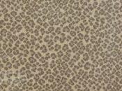 Buy Habitat By Stanton Nylon Carpets In Dalton