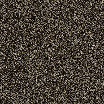 Hypnotic By Shaw Queen Carpets In Dalton