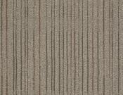 Shaw-Philadelphia-Carpet-Immerse-Consume