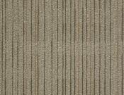 Shaw-Philadelphia-Carpet-Immerse-Engross