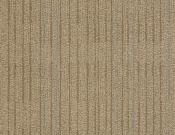 Shaw-Philadelphia-Carpet-Immerse-Intensify
