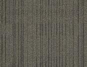 Shaw-Philadelphia-Carpet-Immerse-Involve