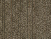 Shaw-Philadelphia-Carpet-Immerse-Ponder