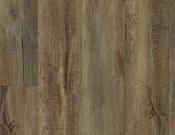 Shaw- Carpet- Impact- Modeled Oak