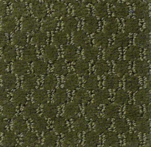 Latest Trend By Shaw Philadelphia Main St Carpets In