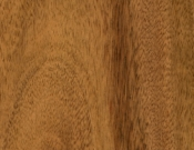 Eagle-Creek-Flooring-Natural Acacia